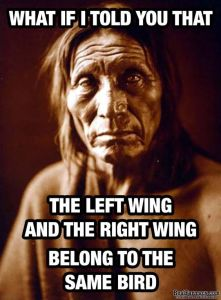 Left Wing Right Wing Same Bird